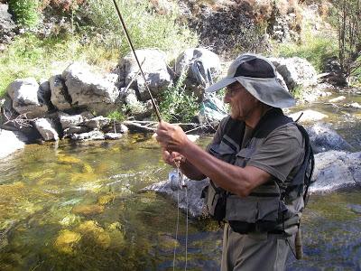 Pescar Seguro