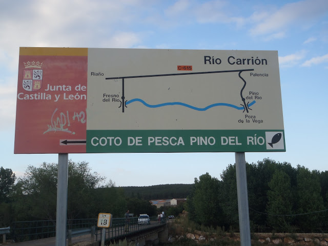 Coto Pino del Río