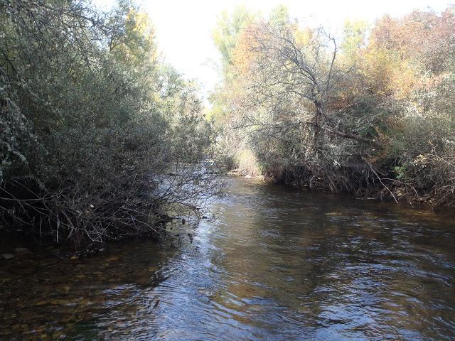 Despedida de la temporada, río Porma