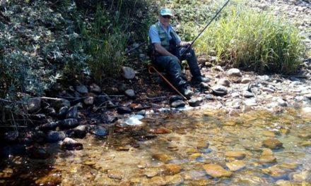 El Ocaso de los Ríos Naturales