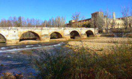 Bernesga y Torío, aguas trucheras en su totalidad.