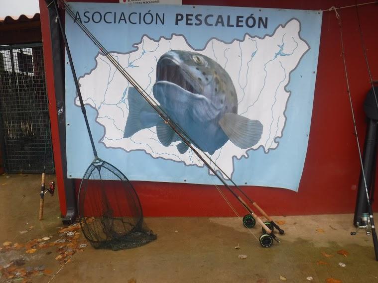 XII Encuentro Pescaleón