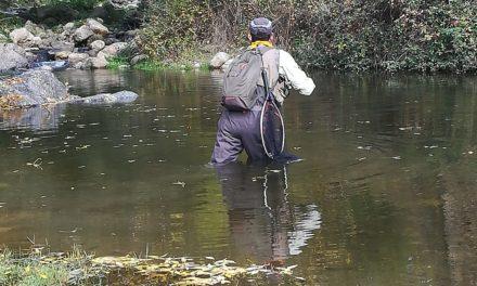 Pasión por la Pesca
