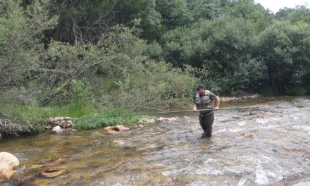 Pesca a varal.